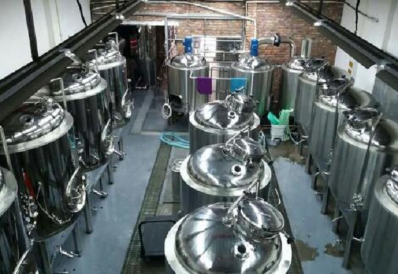 Are you looking for a micro brewery plant like this?